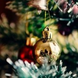 Il décore son sapin de Noël et la réaction de son chat le laisse stupéfait
