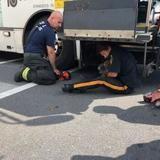 Bus stoppé en pleine route : les policiers se baissent pour regarder dessous et sont terrifiés par ce qu'ils voient