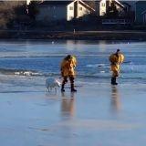 Le sauvetage d'un chien pris au piège d'un lac gelé (Vidéo du jour)
