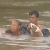 Un chien et sa maîtresse sauvés in extremis de la noyade (Vidéo du jour)
