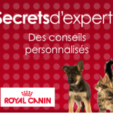 Secrets d'experts, un programme pour mieux connaître et prendre soin de vos animaux