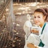 Elle paie les frais d'adoption de 900 animaux de refuge !