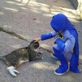 Ce petit garçon de 5 ans n'a qu'une obsession : sauver les chats errants de sa ville