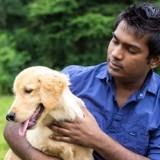 Il croyait avoir incinéré son chien : quelques jours plus tard, il reçoit un message qui le laisse sous le choc
