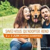 Inquiétante baisse des adoptions à la SPA : ce week-end, répondez au S.O.S. des animaux !