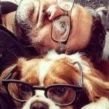Votre chien ou votre chat vous ressemble ? La SPA a besoin de vous !