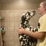 Elle veut donner un bain à son chien, mais il se met debout et fait quelque chose qu'elle n'avait pas imaginé (vidéo)