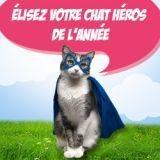 Elisez le chat héros de l'année 2014 !