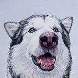 Ces magnifiques dessins de chiens ultra-réalistes vont vous faire fondre