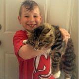 Un enfant de 8 ans offre son cadeau d'anniversaire aux chats d'un refuge