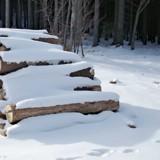 Il voit quelque chose sous la neige en arrivant au refuge et se met à courir quand il réalise la vérité