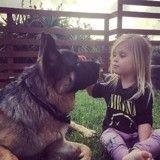 Un chien destiné à être mangé en Chine finit dévoré... de bisous !