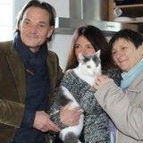 Disparu à Saint-Malo, un chat réapparaît deux ans plus tard à 260 kilomètres !