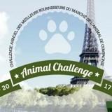 Trophées Animal Challenge & coup de cœur 2017 : quels sont les meilleurs fournisseurs du marché de l'animal de compagnie ?