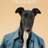 Des Lévriers se transforment en mannequins pour Trussardi