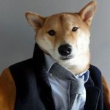 Bodhi, le chien qui se prend pour un mannequin ! (Photos)
