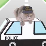 Au Japon, on apprend aux chats à traverser la rue (Vidéo)