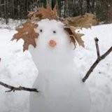 Son maître fait un bonhomme de neige, la chienne a une réaction qui met tout le monde à terre (vidéo)