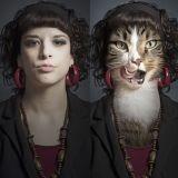 Quand chats et humains fusionnent : des photos aussi drôles qu'étonnantes !
