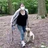 Un homme lui demande d'attacher son chien dans un parc : elle attrape le toutou et fait scandale