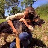 Elle est victime d'un accident de la route et un chien lui sauve la vie