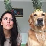 Cette photographe canine prend des clichés insolites avec son toutou