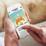 Nos vacances entre amis : un site pour passer de bonnes vacances avec son animal