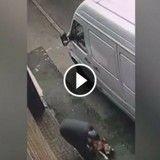 Il tabasse son chien en pleine rue, Internet le traque