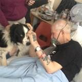 Mourant, il souhaite voir son chien une dernière fois et ces retrouvailles bouleversent tout le monde (Vidéo)