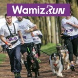 Wamiz Run : nous répondons à vos questions concernant le cani-cross !