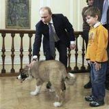 Vladimir Poutine nous présente son chien, Buffy