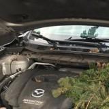 La voiture ne démarre pas : elle ouvre le capot et n'en revient pas de ce qu'elle trouve !