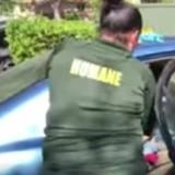 Voiture de l'horreur : sur le parking, l'employé de l'hôtel regarde par la vitre et court appeler la police