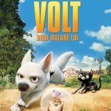 Volt, le chien star en DVD !