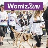 Wamiz Run : nous répondons à vos questions concernant la cani-marche