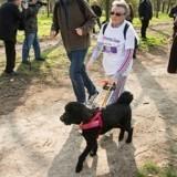 Participez à la Wamiz Run pour que ceux qui ne voient plus retrouvent la lumière !