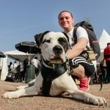10 bonnes raisons que votre chien vous sorte le 25 mars au Village de la Wamiz Run