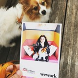 Notre chienne reporter, en visite chez le leader mondial du coworking !