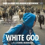 White God : LE film à aller voir ce week-end !