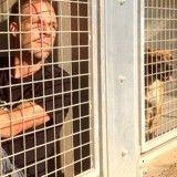 Rémi Gaillard se met en cage pour faire adopter tous les animaux d'un refuge, suivez notre direct