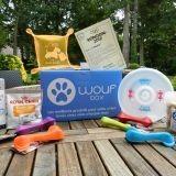 Woufbox, le coffret cadeau pour chiens, met le sport à l'honneur !