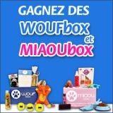 Gagnez des Woufbox et Miaoubox pour votre chien ou chat (Concours)