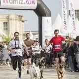 Wamiz Run : toutes les photos de l'événement le plus wouf de l'année !