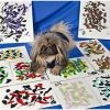 Les chiens qui savaient peindre