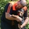 Et si les chiens dits «dangereux» étaient les plus adorables du monde ?