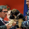 Le chiot russe Dobrynya officiellement adopté par la France