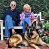 Le chien de Joe Biden jugé laid et trop vieux pour un président des États-Unis !