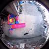 Ces deux chiens se battent contre un cobra pour sauver un bébé (Vidéo)