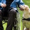 Il déjeune avec son chien d'assistance : un employé lui demande de partir pour une raison inacceptable