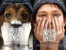 affiche film chien